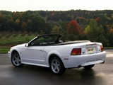 Images of Mustang SVT Cobra Convertible 1999–2002