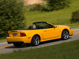 Images of Mustang SVT Cobra Convertible 2002–04