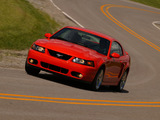 Mustang SVT Cobra Coupe 2002–04 photos