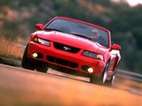 Pictures of Mustang SVT Cobra Convertible 2002–04