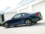 Pictures of Mustang SVT Cobra Mystichrome 2004