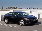 Pictures of Nissan Maxima (A36) 2008