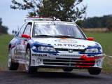 Peugeot 306 Maxi Kit Car 1996–98 wallpapers
