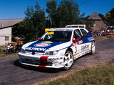 Photos of Peugeot 306 Maxi Kit Car 1996–98