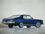 Pontiac Ventura Custom GTO Coupe 1974 photos