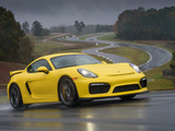 Porsche Cayman GT4 US-spec (981C) 2015 images