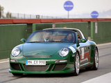 Photos of Ruf eRuf Greenster Concept (997) 2009