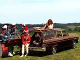 Rambler Classic 770 Cross Country Wagon 1965 photos