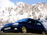 Renault Clio Williams 1993 images