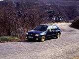 Renault Clio Williams 1993 photos