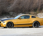 Geiger Shelby GT640 Golden Snake 2011 photos