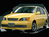 Images of Toyota Ipsum US Custom (XM10G) 1996–2001
