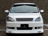 LX-Mode Toyota Ipsum 240S Type S 2001–03 photos