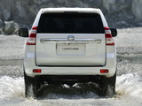 Images of Toyota Land Cruiser (150) 2013