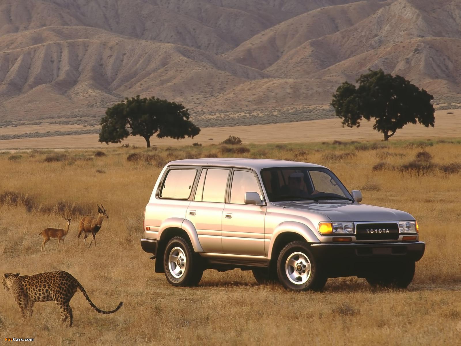 Wallpapers Of Toyota Land Cruiser 80 Us Spec Hz81v 1989