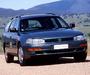 Images of Toyota Vienta Wagon (XV10) 1995–96