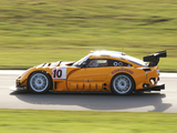 Photos of TVR Sagaris GT 2008