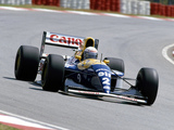 Williams FW15C 1993 photos
