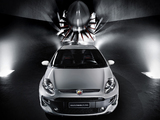 Abarth Punto Evo esseesse 199 (2010) photos