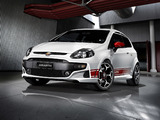 Pictures of Abarth Punto Evo 199 (2010)