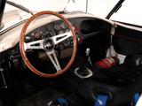 Images of AC Cobra Le Mans MkI (1963)