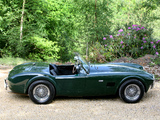 Photos of AC Cobra MkII (1963–1965)