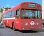 Pictures of Swift AEC MB Merlin (1966)