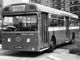 Images of AEC Merlin 4P2R (1964–1974)