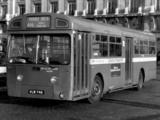 Photos of AEC Merlin 4P2R (1964–1974)