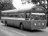 AEC Merlin 3P2R (1964–1974) wallpapers