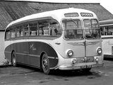 AEC Regal IV C39C (1951) images