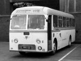 AEC Reliance B45F (1962) images