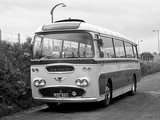 Photos of AEC Reliance Plaxton C41F (1961)