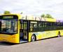 Pictures of Alexander Dennis Enviro300 School Bus (2008)