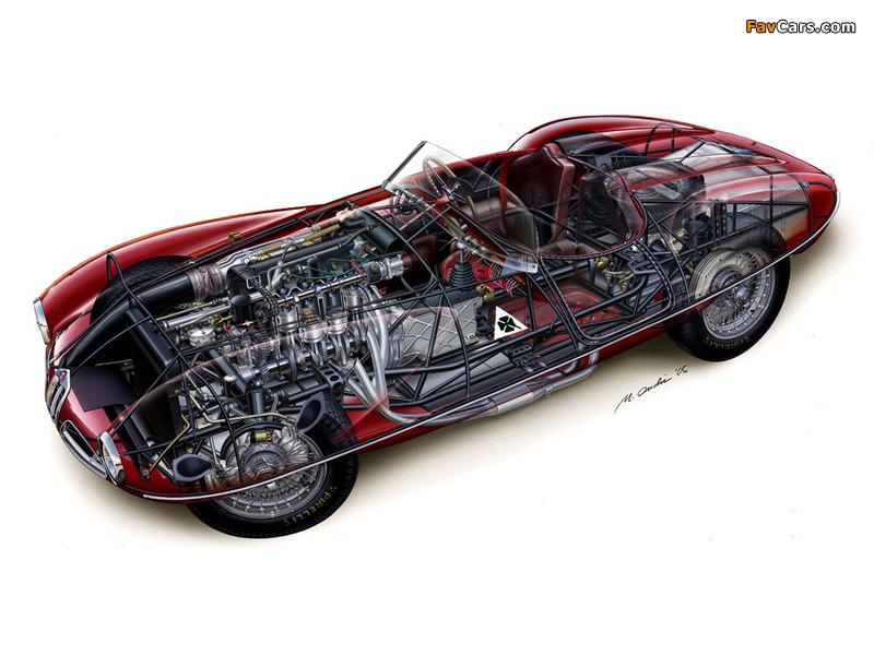 Alfa Romeo 1900 C52 Disco Volante Spider 1359 (1952) pictures (800 x 600)