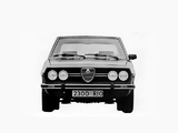 Pictures of Alfa Romeo 2300 Rio 102 (1978–1980)