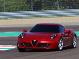 Alfa Romeo 4C Worldwide (960) 2013 pictures