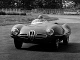 Alfa Romeo 1900 C52 Disco Volante Spider 1359 (1952) photos
