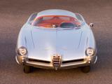 Alfa Romeo B.A.T. 9 (1955) photos