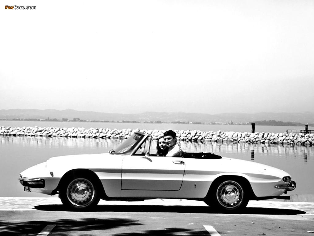 Alfa Romeo Spider 1300 Junior 105 (1967–1969) images (1024 x 768)