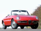 Photos of Alfa Romeo Spider 1600 Duetto UK-spec 105 (1966–1967)