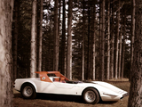 Alfa Romeo P33 Roadster (1968) photos