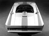 Alfa Romeo P33 Cuneo Concept (1971) images