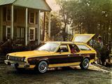AMC Hornet Sportabout 1975–77 images