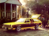AMC Hornet Sportabout 1975–77 photos