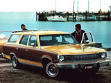 Pictures of AMC Matador Station Wagon 1974–78
