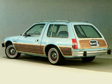 AMC Pacer D/L Wagon 1980 photos