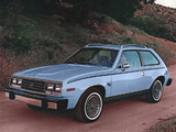 Photos of AMC Spirit D/L Sedan 1979–80