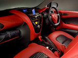 Pictures of Aston Martin Cygnet Concept (2009)