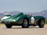 Aston Martin DB3S (1953–1956) pictures